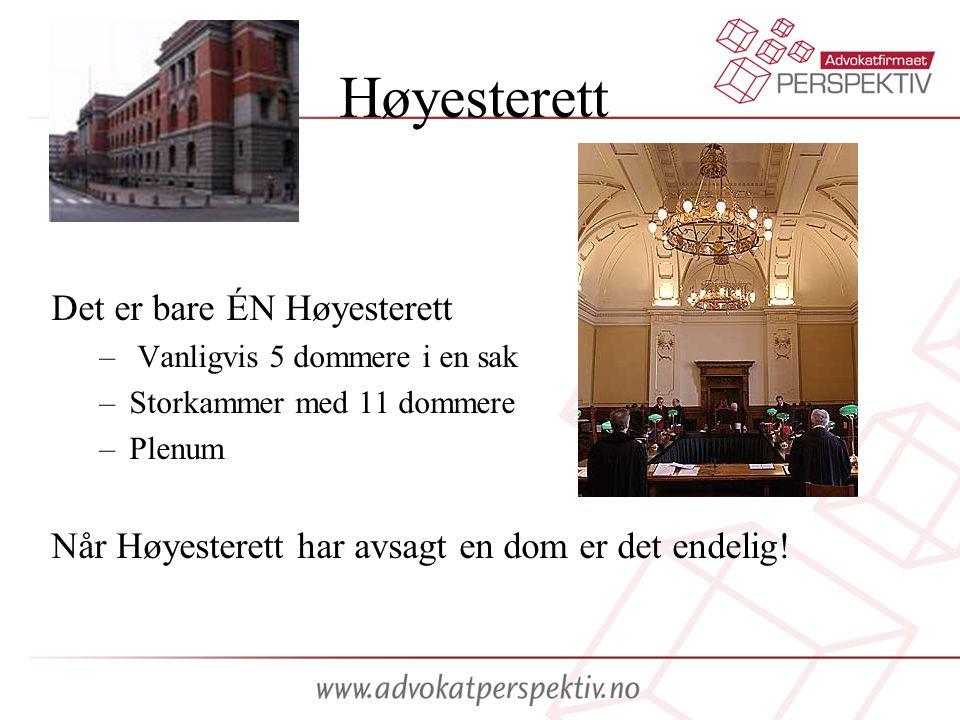 Høyesterett Det er bare ÉN Høyesterett – Vanligvis 5 dommere i en sak –Storkammer med 11 dommere –Plenum Når Høyesterett har avsagt en dom er det endelig!