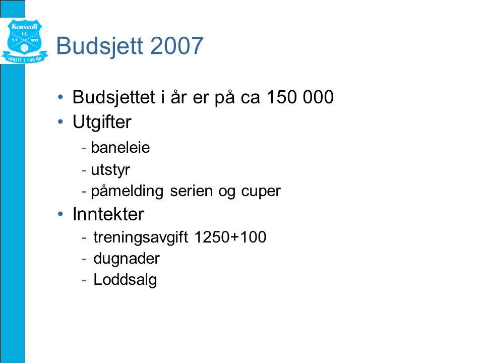 Budsjett 2007 Budsjettet i år er på ca 150 000 Utgifter - baneleie - utstyr - påmelding serien og cuper Inntekter -treningsavgift 1250+100 -dugnader -Loddsalg
