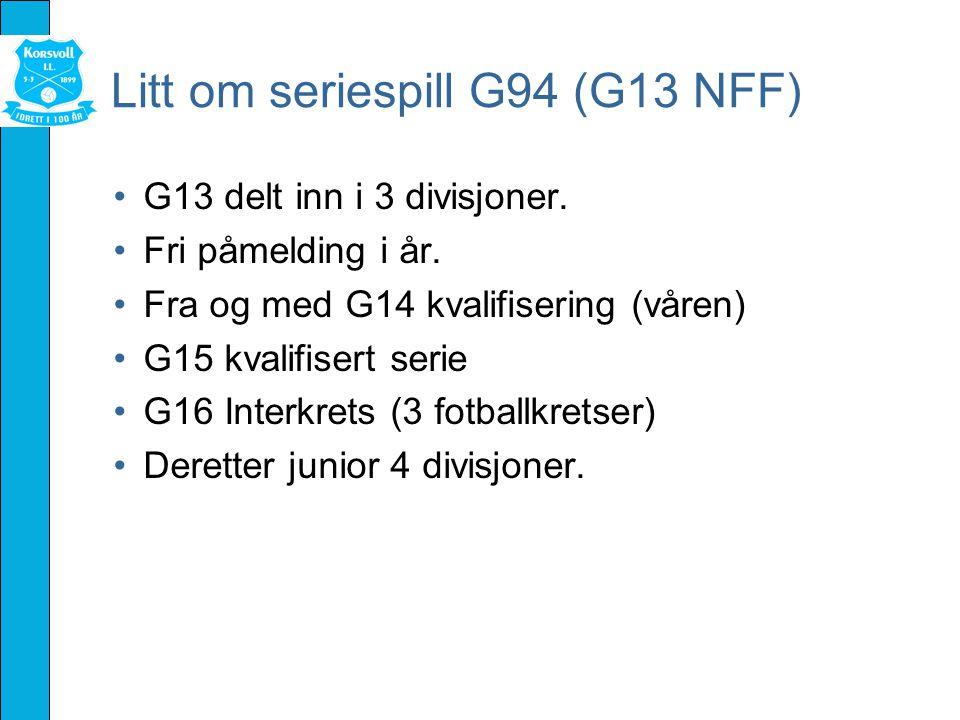 Litt om seriespill G94 (G13 NFF) G13 delt inn i 3 divisjoner.