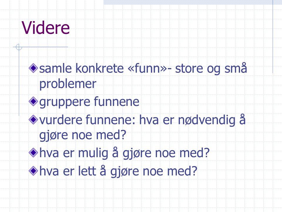 Videre samle konkrete «funn»- store og små problemer gruppere funnene vurdere funnene: hva er nødvendig å gjøre noe med.