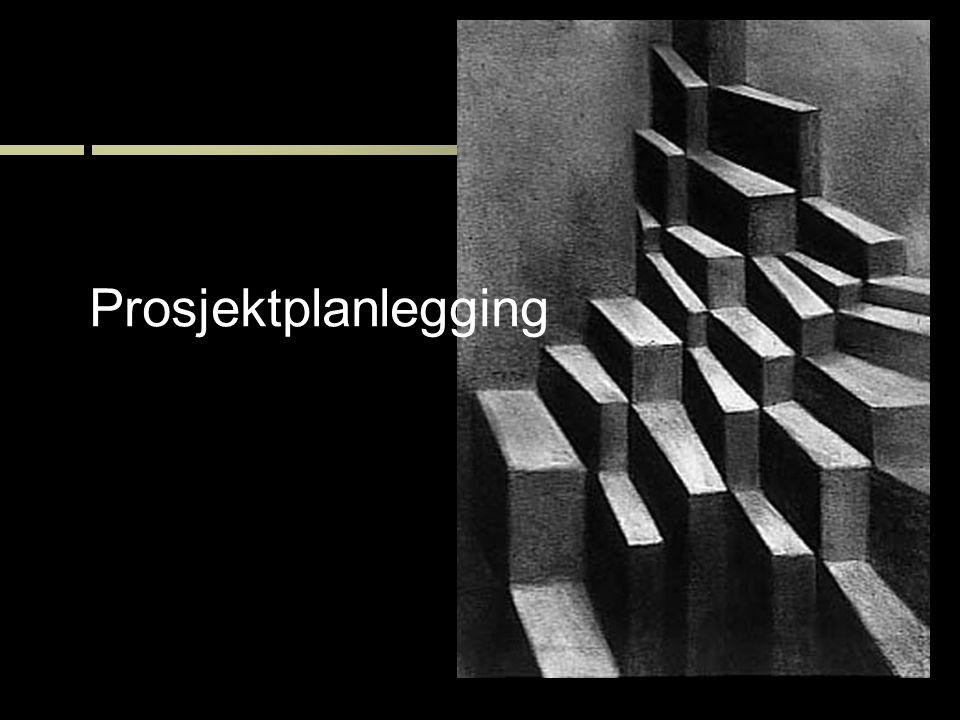30 Prosjektplanlegging