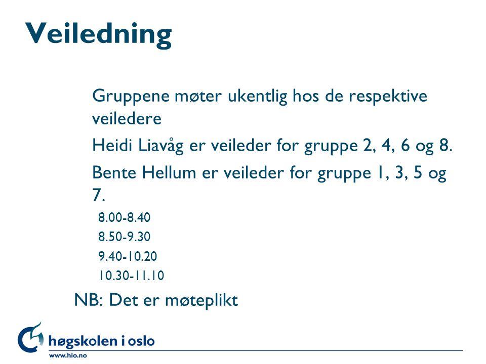 Veiledning Gruppene møter ukentlig hos de respektive veiledere Heidi Liavåg er veileder for gruppe 2, 4, 6 og 8. Bente Hellum er veileder for gruppe 1