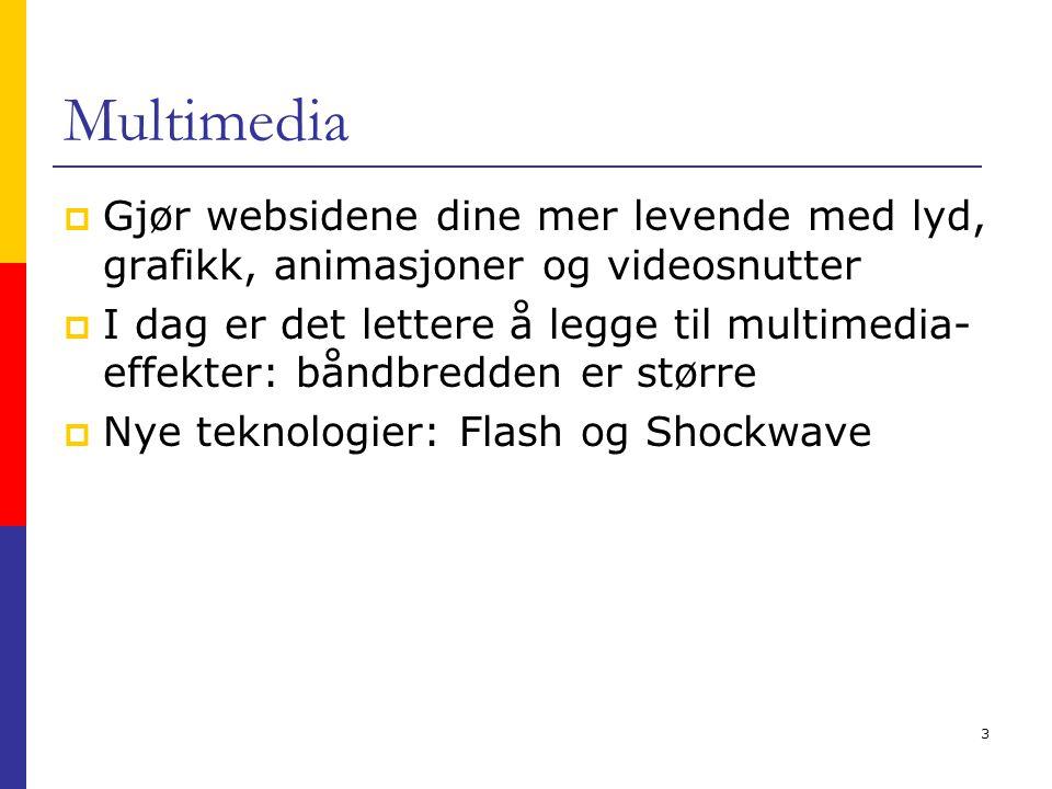 3 Multimedia  Gjør websidene dine mer levende med lyd, grafikk, animasjoner og videosnutter  I dag er det lettere å legge til multimedia- effekter: båndbredden er større  Nye teknologier: Flash og Shockwave