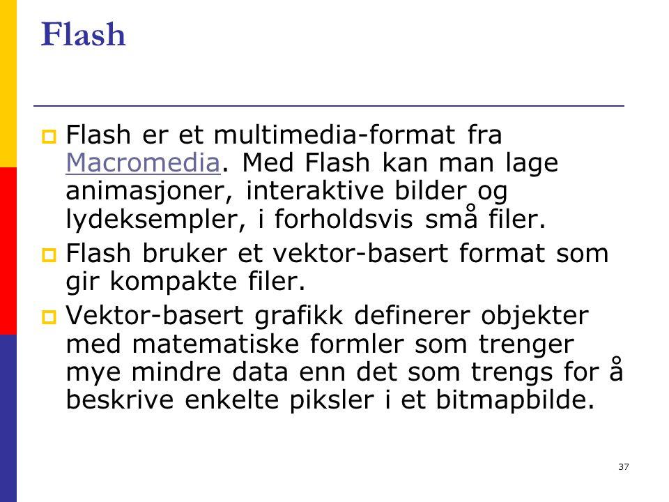 37 Flash  Flash er et multimedia-format fra Macromedia. Med Flash kan man lage animasjoner, interaktive bilder og lydeksempler, i forholdsvis små fil