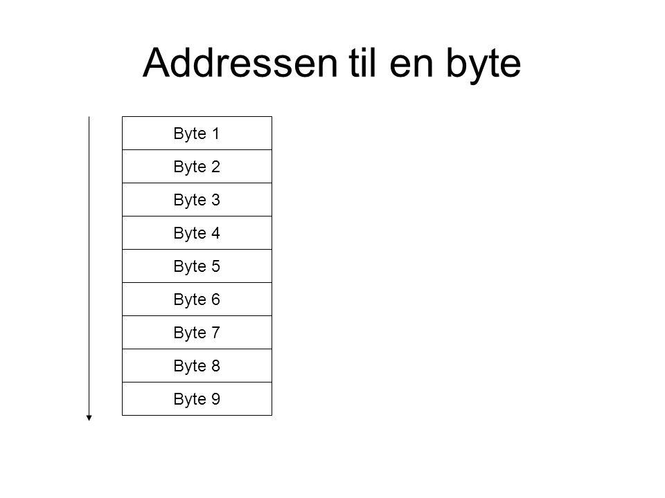 Addressen til en byte Byte 1 Byte 2 Byte 7 Byte 9 Byte 3 Byte 6 Byte 8 Byte 5 Byte 4