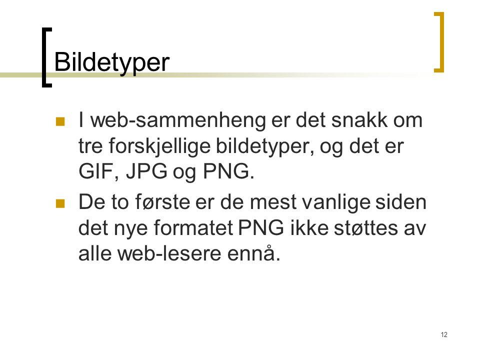12 Bildetyper I web-sammenheng er det snakk om tre forskjellige bildetyper, og det er GIF, JPG og PNG. De to første er de mest vanlige siden det nye f