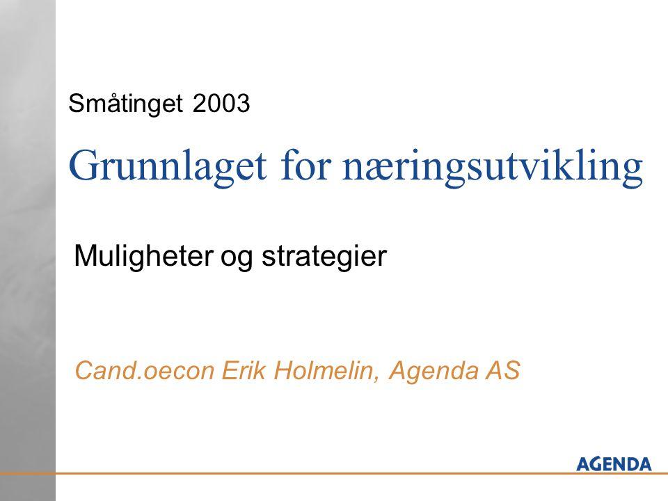 Småtinget 2003 Grunnlaget for næringsutvikling Muligheter og strategier Cand.oecon Erik Holmelin, Agenda AS