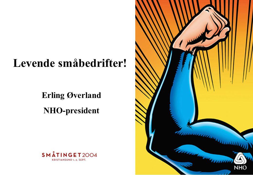 Levende småbedrifter! Erling Øverland NHO-president