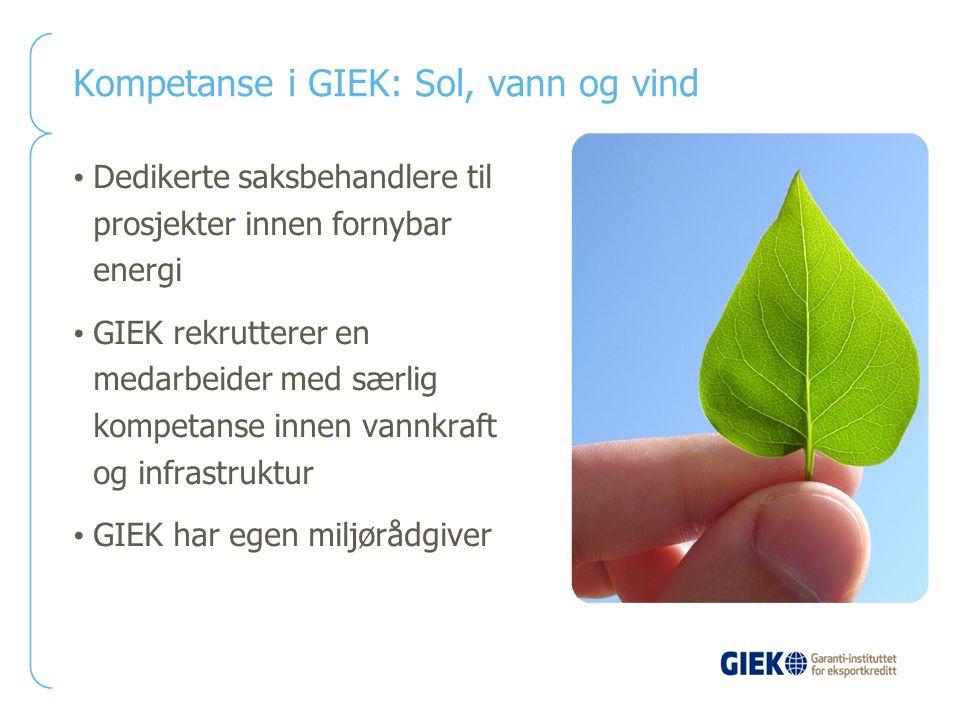 Kompetanse i GIEK: Sol, vann og vind Dedikerte saksbehandlere til prosjekter innen fornybar energi GIEK rekrutterer en medarbeider med særlig kompetan