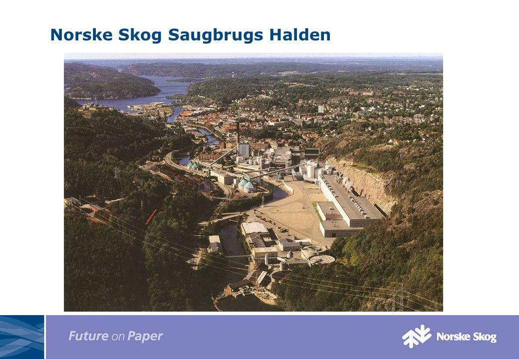 Norske Skog Saugbrugs Halden