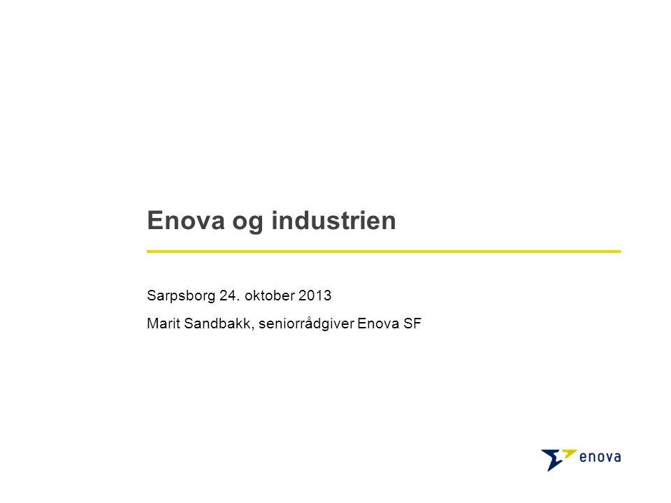 2 20 mrd I årlige energikostnader i norske industribedrifter