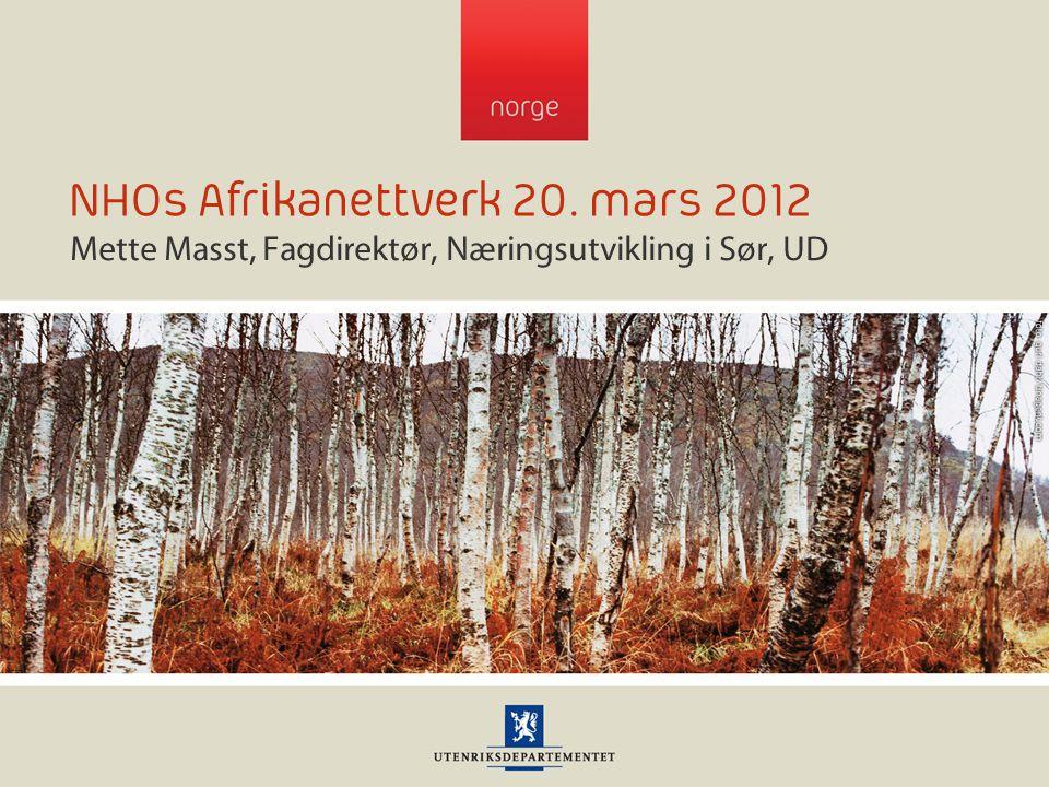 NHOs Afrikanettverk 20. mars 2012 Mette Masst, Fagdirektør, Næringsutvikling i Sør, UD
