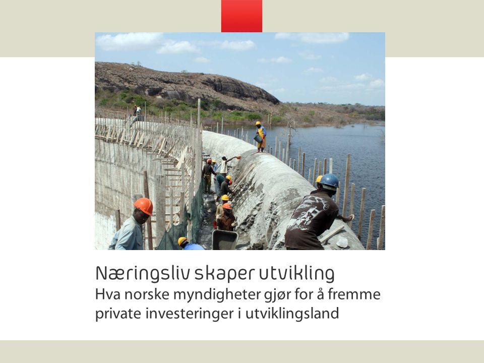 Næringsliv skaper utvikling Hva norske myndigheter gjør for å fremme private investeringer i utviklingsland