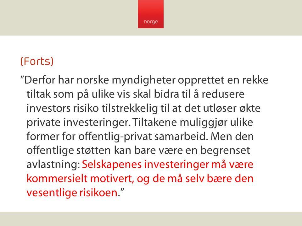 """(Forts) """"Derfor har norske myndigheter opprettet en rekke tiltak som på ulike vis skal bidra til å redusere investors risiko tilstrekkelig til at det"""