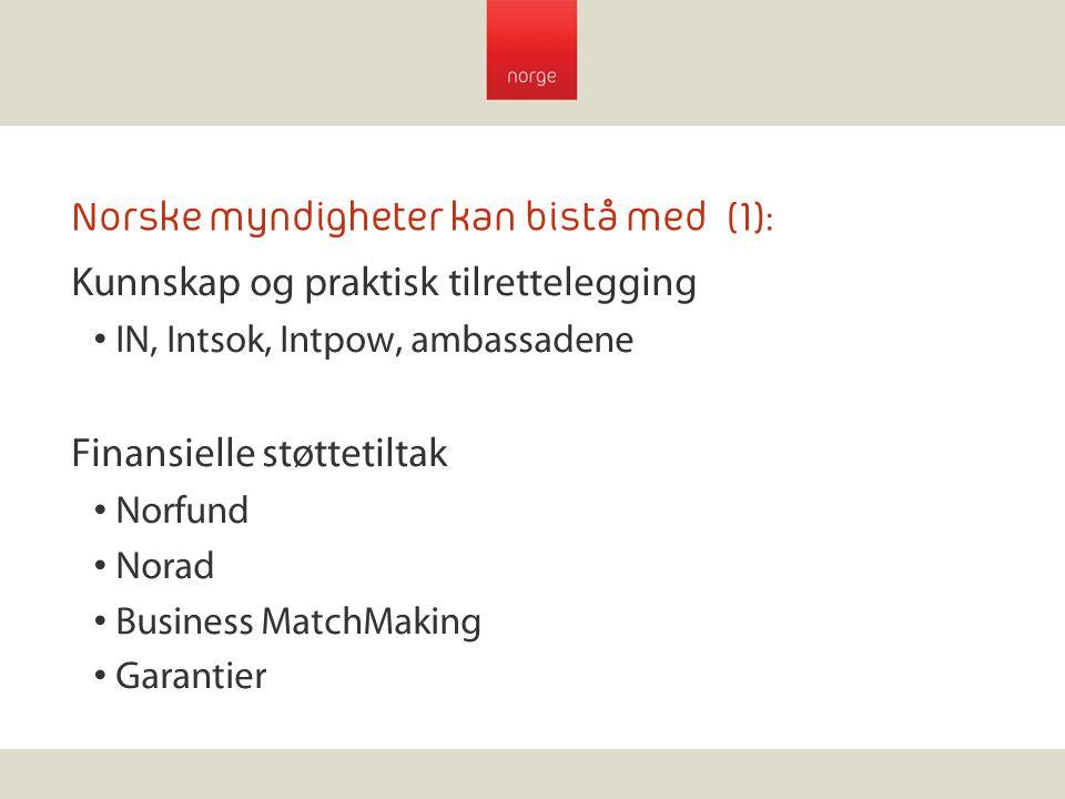 Norske myndigheter kan bistå med (1): Kunnskap og praktisk tilrettelegging IN, Intsok, Intpow, ambassadene Finansielle støttetiltak Norfund Norad Busi