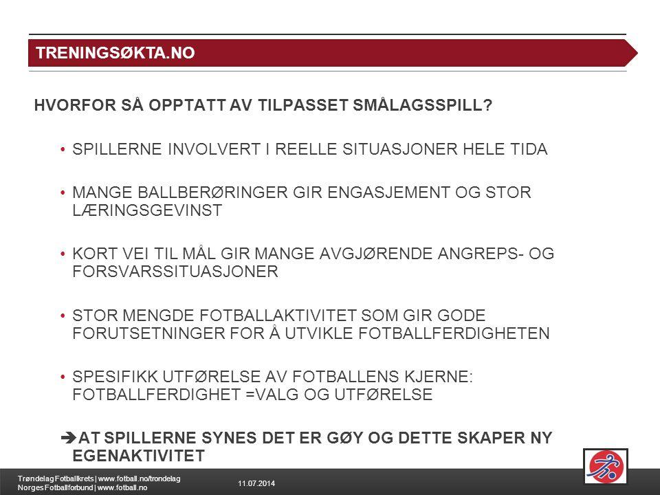 11.07.2014 Trøndelag Fotballkrets | www.fotball.no/trondelag Norges Fotballforbund | www.fotball.no HVORFOR SÅ OPPTATT AV TILPASSET SMÅLAGSSPILL? SPIL