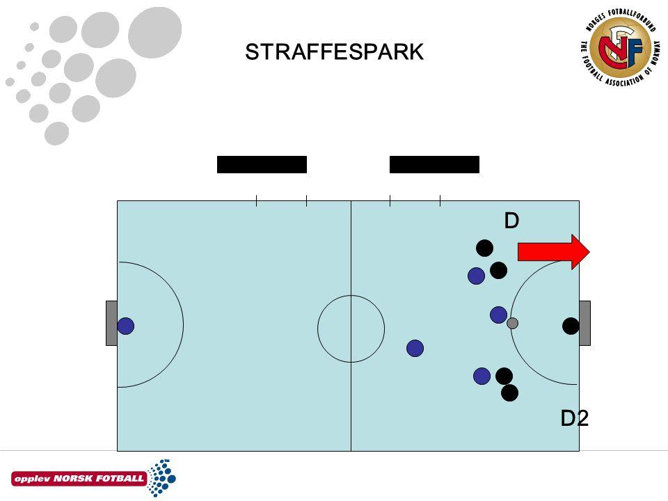 STRAFFESPARK D2 D