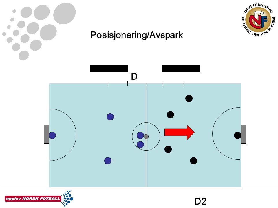 Posisjonering/Avspark D2 D