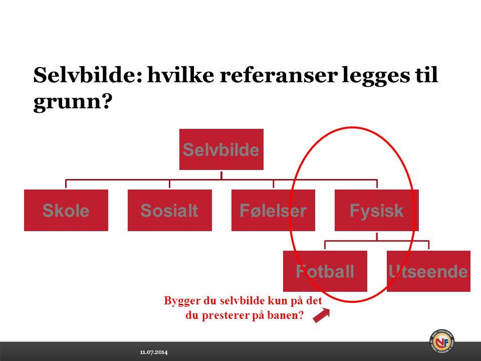 11.07.2014 Selvbilde: hvilke referanser legges til grunn.