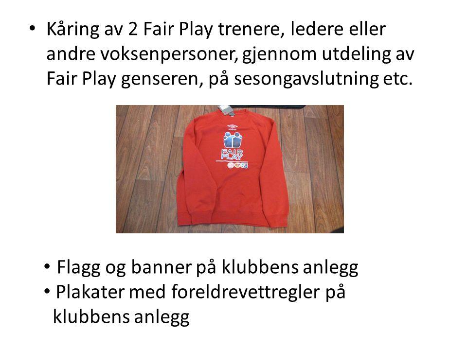 Kåring av 2 Fair Play trenere, ledere eller andre voksenpersoner, gjennom utdeling av Fair Play genseren, på sesongavslutning etc. Flagg og banner på