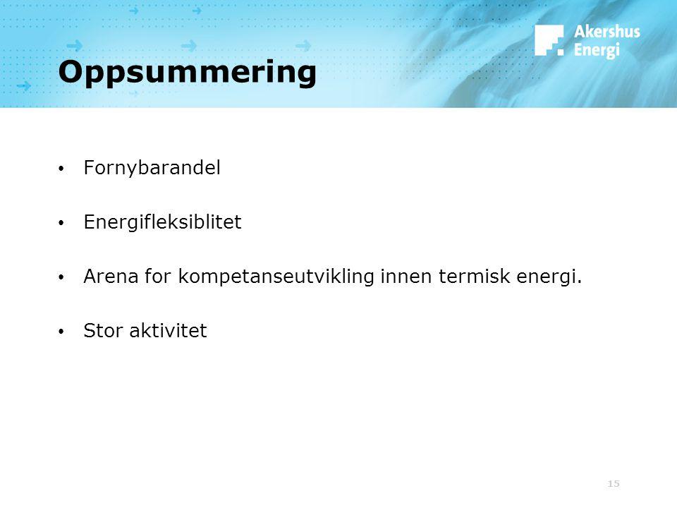 15 Oppsummering Fornybarandel Energifleksiblitet Arena for kompetanseutvikling innen termisk energi. Stor aktivitet