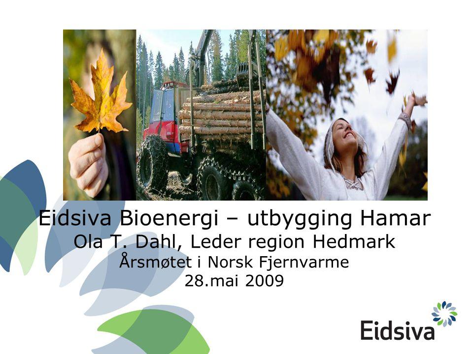 Eidsiva Bioenergi – utbygging Hamar Ola T.