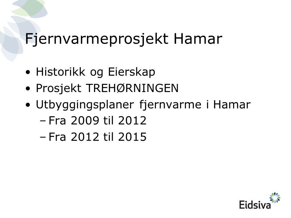 Historikk, fjernvarme i Hamar Byggestart 2001 (BioVarme + Eidsiva + Hias) Varmesentral 5 MW BIO, 2002 (Børstad) Varmesentral 3,5 MW BIO, 2007 (Unikorn) 17 km fjernvarmegrøfter, 01-01-09 120 Kunder, 01-01-09 45 GWh levert varme i 2008 100% Eidsiva eierskap fra november 2008