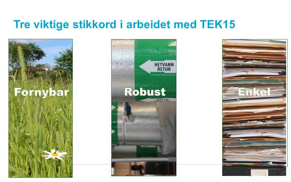 4 Tre viktige stikkord i arbeidet med TEK15