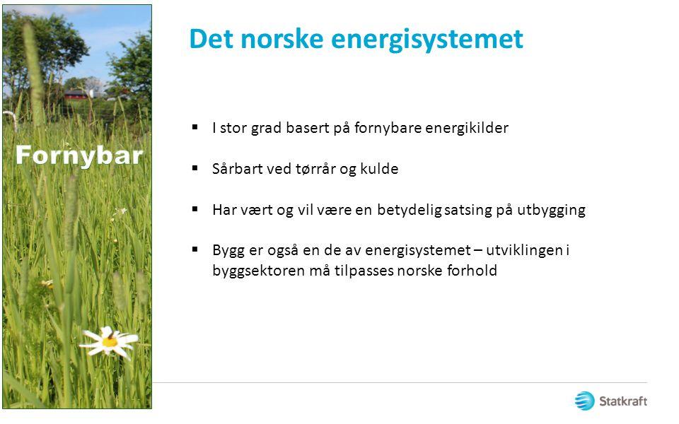 Det norske energisystemet  I stor grad basert på fornybare energikilder  Sårbart ved tørrår og kulde  Har vært og vil være en betydelig satsing på