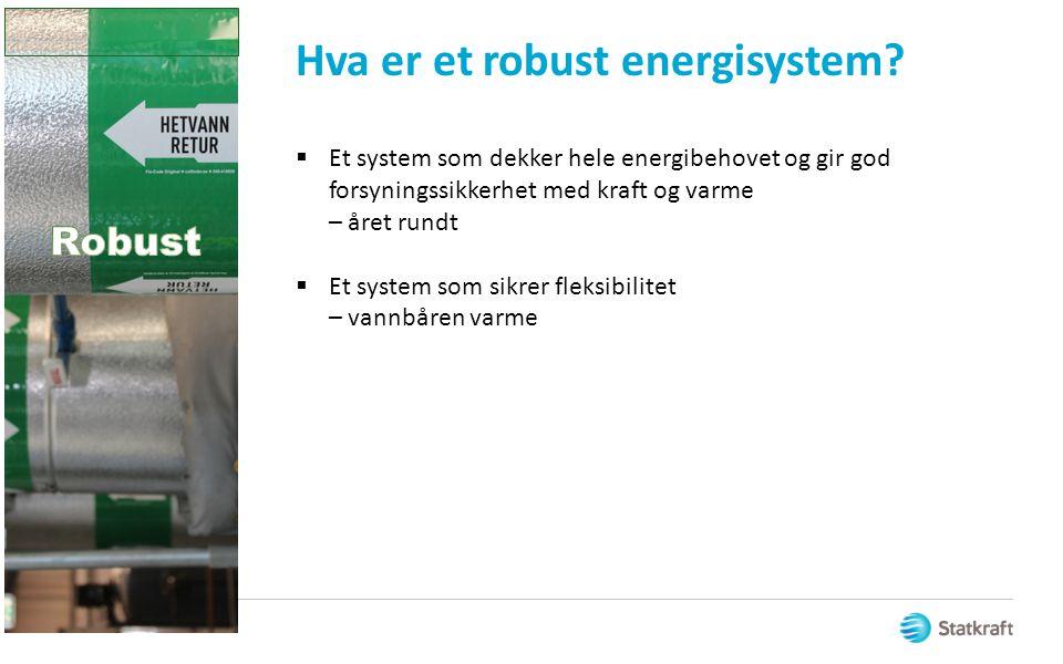 Hva er et robust energisystem?  Et system som dekker hele energibehovet og gir god forsyningssikkerhet med kraft og varme – året rundt  Et system so