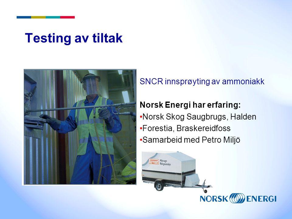 Testing av tiltak SNCR innsprøyting av ammoniakk Norsk Energi har erfaring: Norsk Skog Saugbrugs, Halden Forestia, Braskereidfoss Samarbeid med Petro Miljö