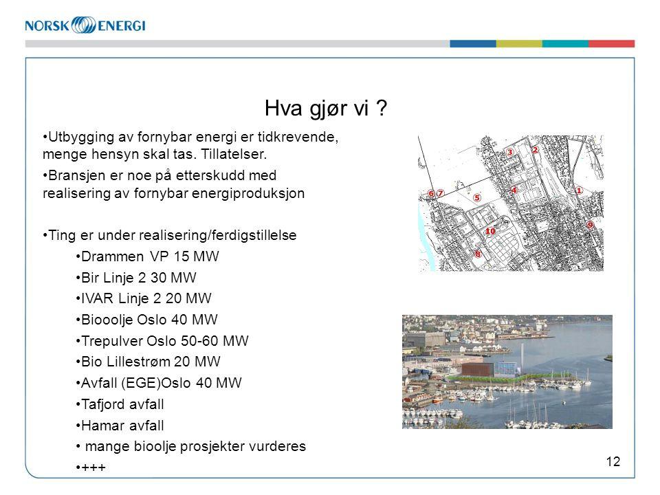 Hva gjør vi ? 12 Utbygging av fornybar energi er tidkrevende, menge hensyn skal tas. Tillatelser. Bransjen er noe på etterskudd med realisering av for