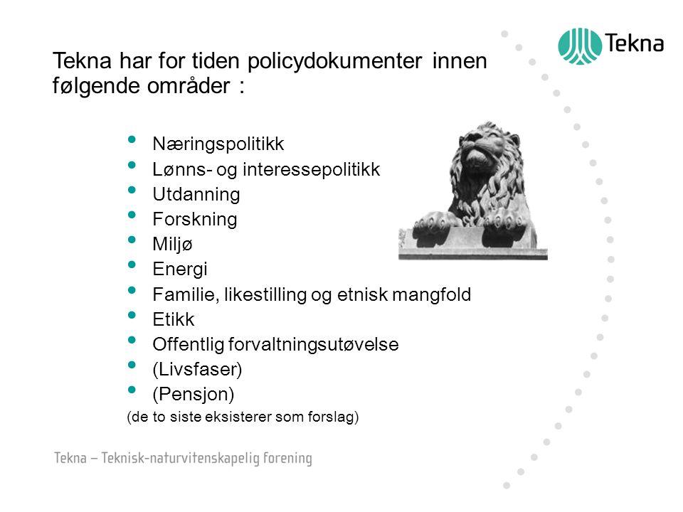 Tekna har for tiden policydokumenter innen følgende områder : Næringspolitikk Lønns- og interessepolitikk Utdanning Forskning Miljø Energi Familie, likestilling og etnisk mangfold Etikk Offentlig forvaltningsutøvelse (Livsfaser) (Pensjon) (de to siste eksisterer som forslag)
