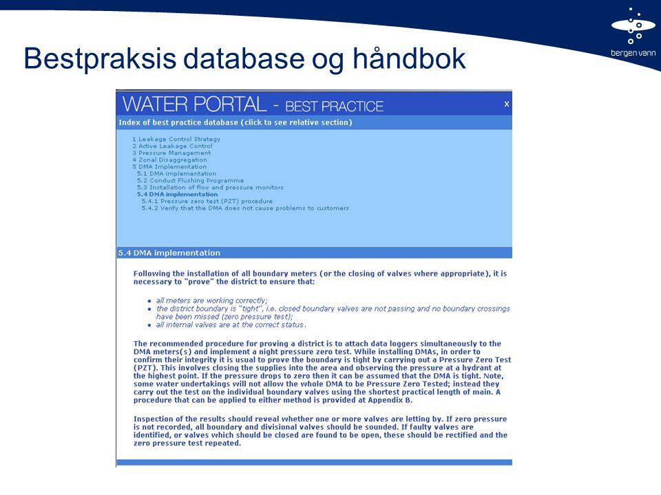Bestpraksis database og håndbok