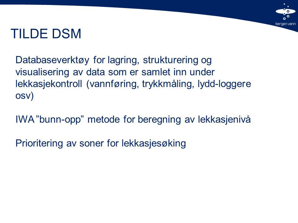 TILDE DSM Databaseverktøy for lagring, strukturering og visualisering av data som er samlet inn under lekkasjekontroll (vannføring, trykkmåling, lydd-loggere osv) IWA bunn-opp metode for beregning av lekkasjenivå Prioritering av soner for lekkasjesøking