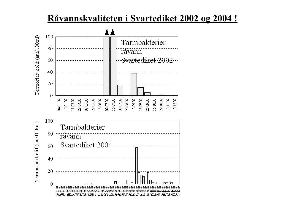 Råvannskvaliteten i Svartediket 2002 og 2004 !