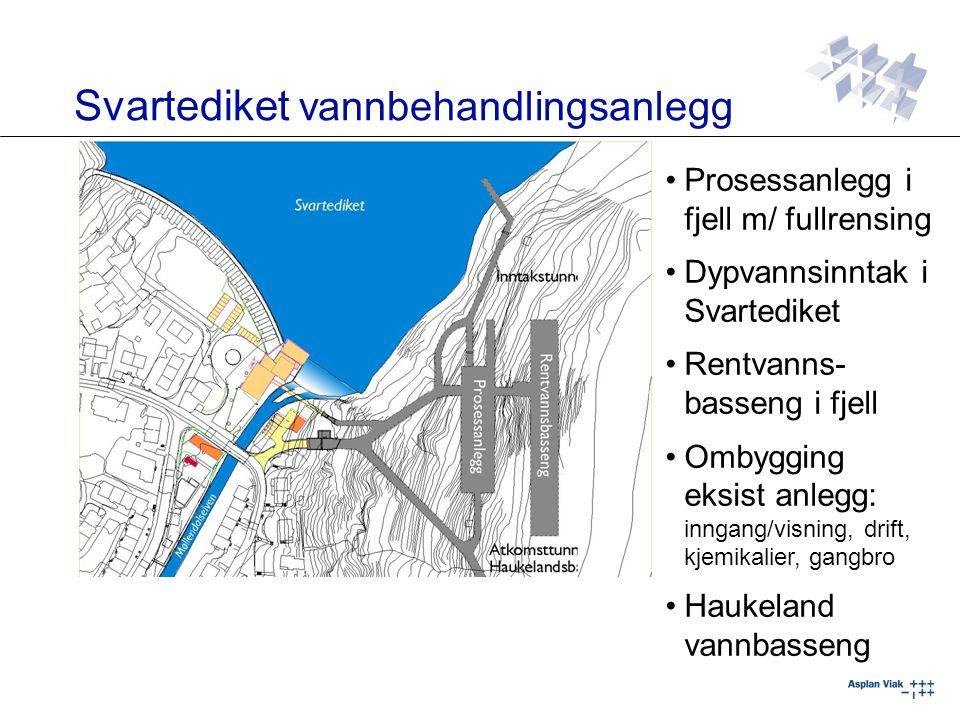 Trase mellom Bjørndalen og Landås bassengkryss, lager sammenheng i 125- sonen 1865 m fjelltunnel, 1285 m vannfyllt i råsprengt fjell med støpt såle Vannvolum: Ca 25.000 m 3 Kt 125 på fritt vannspeil