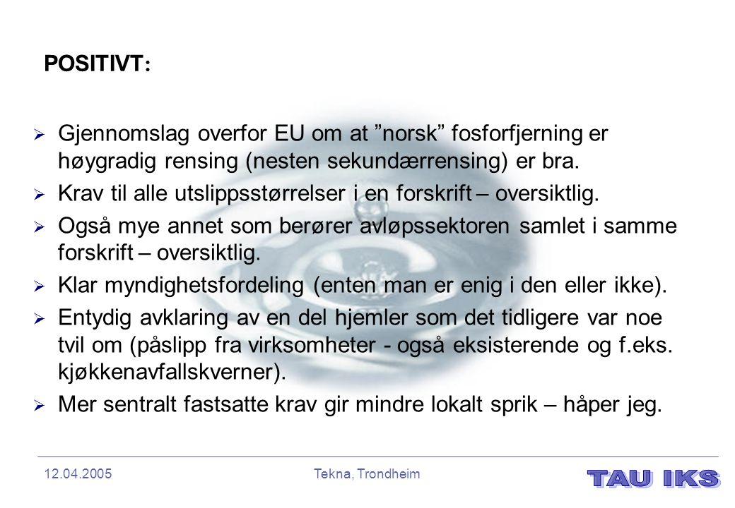 """12.04.2005Tekna, Trondheim POSITIVT :  Gjennomslag overfor EU om at """"norsk"""" fosforfjerning er høygradig rensing (nesten sekundærrensing) er bra.  Kr"""
