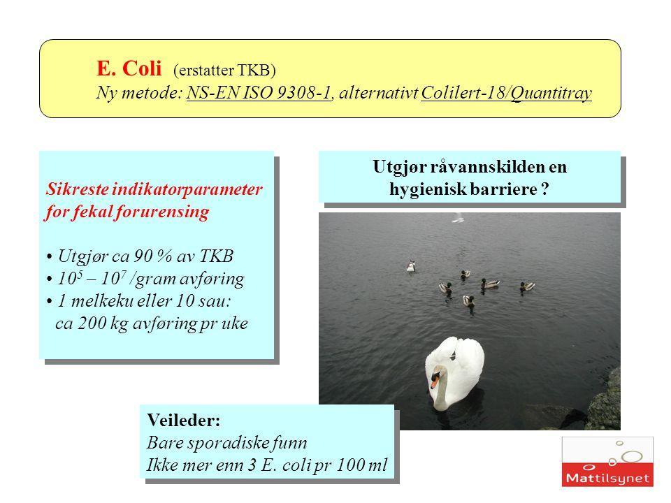 Koliforme bakterier Ny metode: NS-EN ISO 9308-1, alternativt Colilert-18/Quantitray Med Colilertmetoden: Høyere antall koliforme Europeisk utprøving 1999/2000 Erfaringer i laboratorier Vil i større grad enn for gammel metode detektere miljøkoliforme Med Colilertmetoden: Høyere antall koliforme Europeisk utprøving 1999/2000 Erfaringer i laboratorier Vil i større grad enn for gammel metode detektere miljøkoliforme analysemetode eksempel