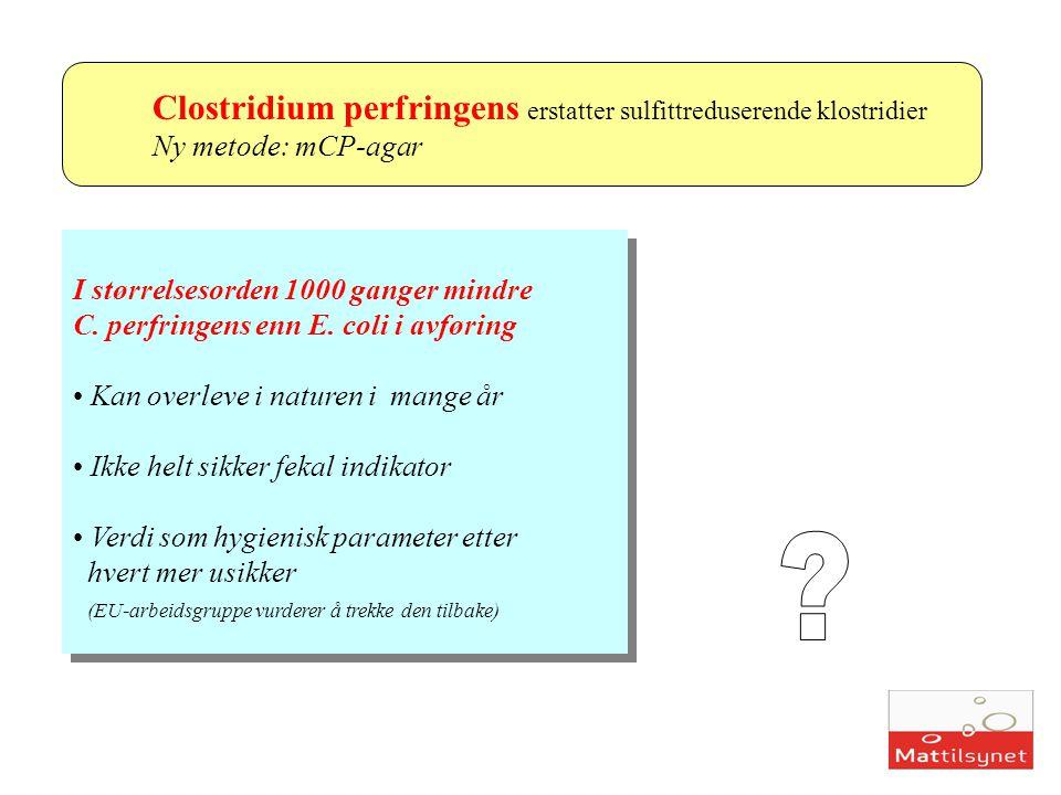 Clostridium perfringens erstatter sulfittreduserende klostridier Ny metode: mCP-agar I størrelsesorden 1000 ganger mindre C. perfringens enn E. coli i
