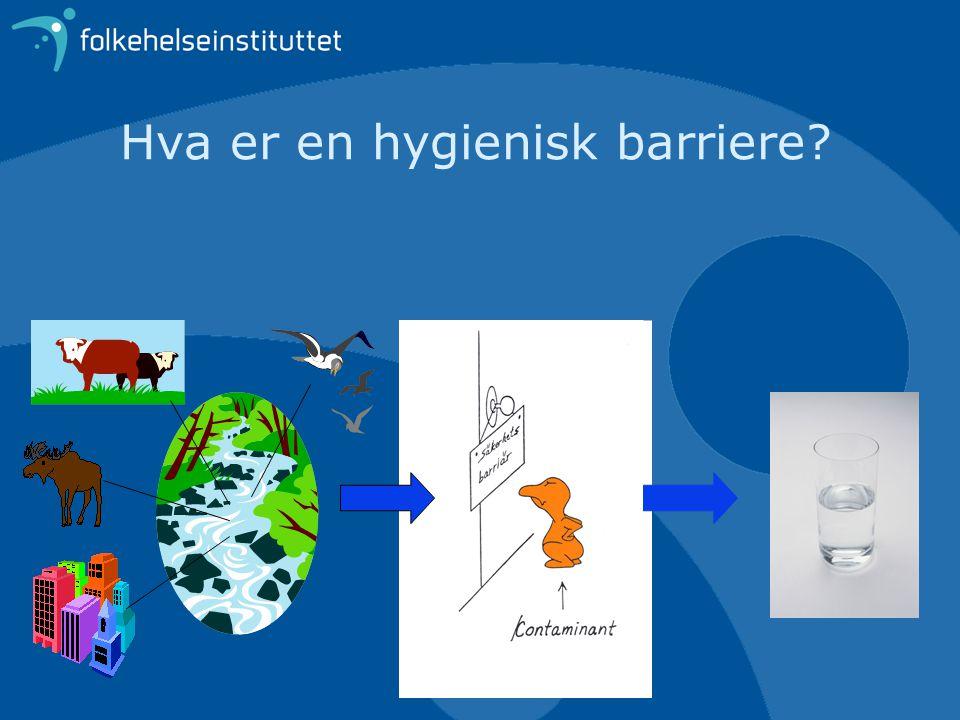Hva er en hygienisk barriere?