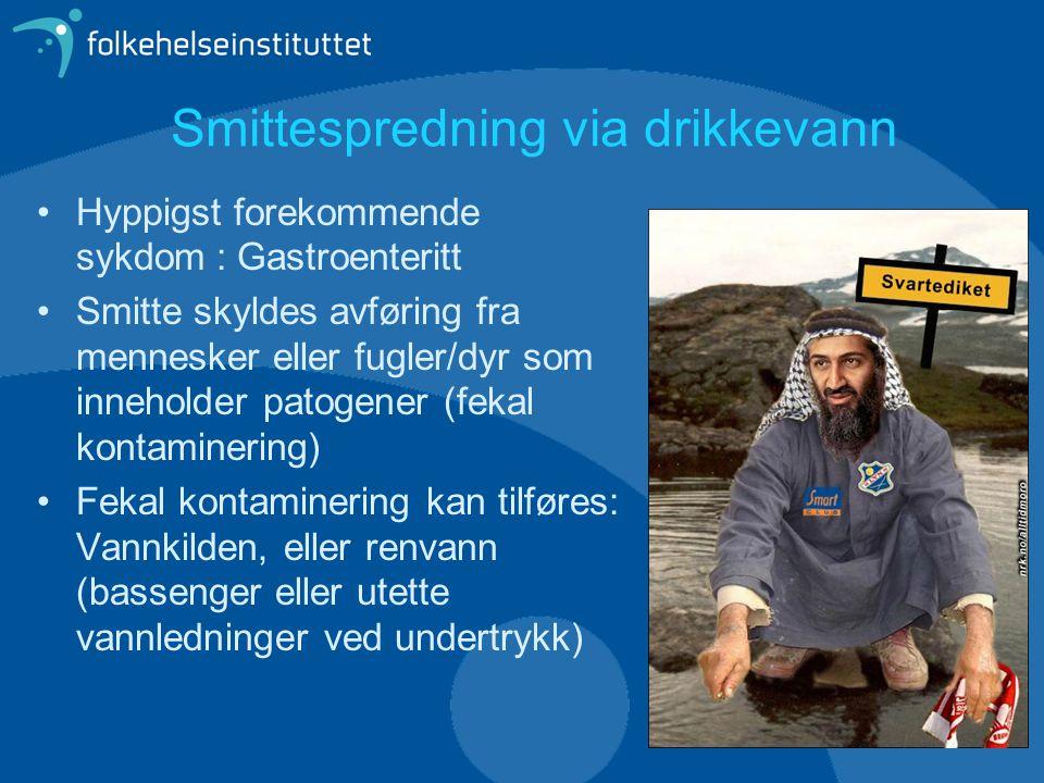 Smittespredning via drikkevann Ikke alle dyr/mennesker som utskiller smitte er syke!.
