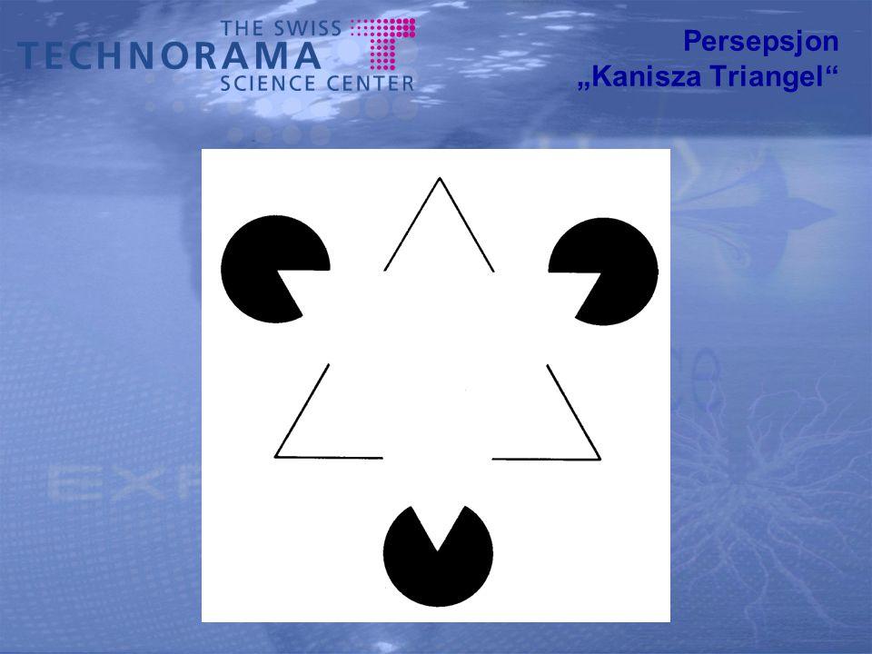 "Persepsjon ""Kanisza Triangel"