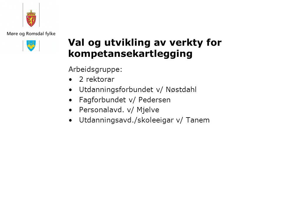 Val og utvikling av verkty for kompetansekartlegging Arbeidsgruppe: 2 rektorar Utdanningsforbundet v/ Nøstdahl Fagforbundet v/ Pedersen Personalavd. v