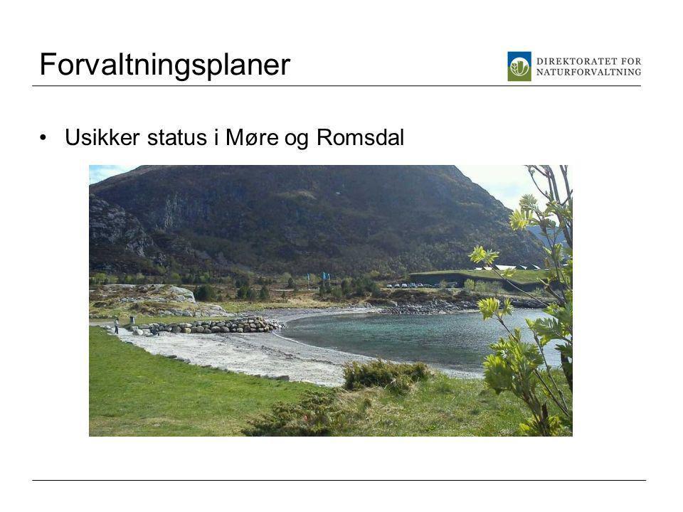 Forvaltningsplaner Usikker status i Møre og Romsdal
