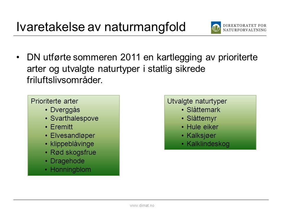 Ivaretakelse av naturmangfold DN utførte sommeren 2011 en kartlegging av prioriterte arter og utvalgte naturtyper i statlig sikrede friluftslivsområde