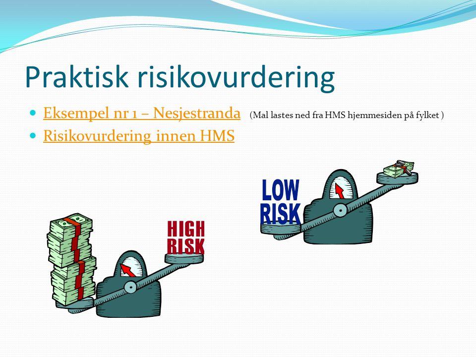 Praktisk risikovurdering Eksempel nr 1 – Nesjestranda (Mal lastes ned fra HMS hjemmesiden på fylket ) Eksempel nr 1 – Nesjestranda Risikovurdering innen HMS