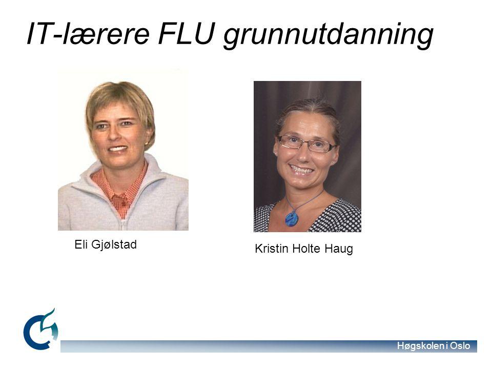 Høgskolen i Oslo IT-lærere FLU grunnutdanning Kristin Holte Haug Eli Gjølstad