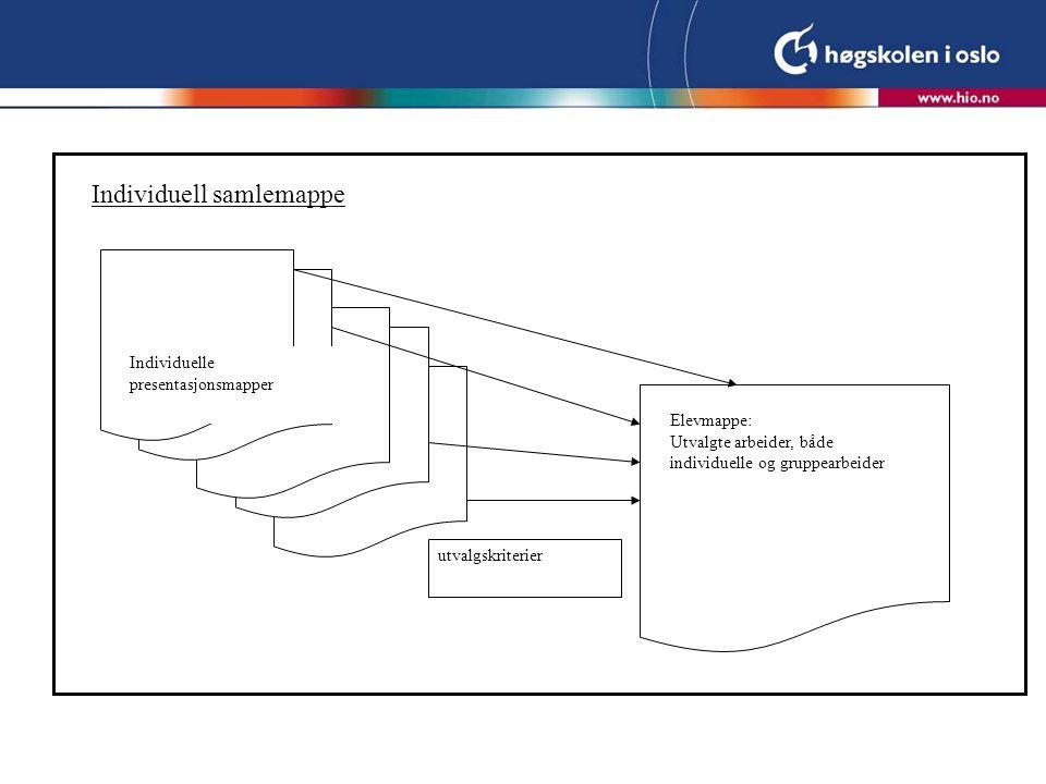 Individuell samlemappe Individuelle presentasjonsmapper utvalgskriterier Elevmappe: Utvalgte arbeider, både individuelle og gruppearbeider