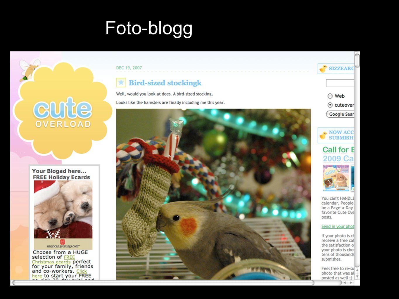 Foto-blogg